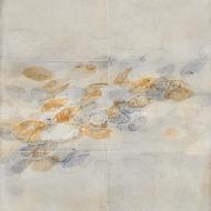 Artifact/blades (2), 73 x 58 cm