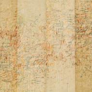 Memory of Small Things (sepia), 91 x 114 cm